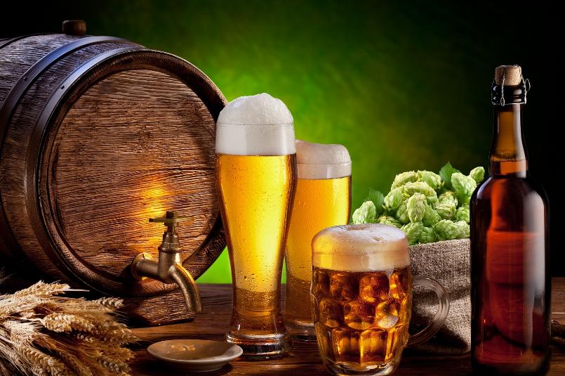 pivo 11